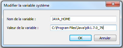 Setting the environment variable JAVA_HOME